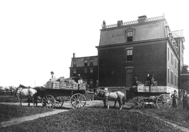 Photo of a horse drawn carriage in front of the old administration building